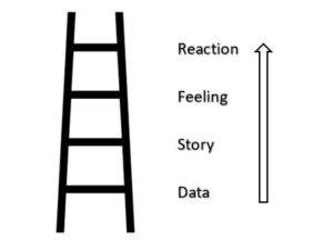 The Ladder of Inference - Adapted from a model by Chris Argyris